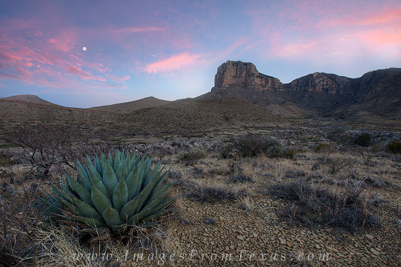 guadalupe national park,guadalupe mountains national park,guadalupe mountain national park,texas national park,guadalupe peak,guadelupe mountains national park,el capitan pictures,el capitan images,gu, photo