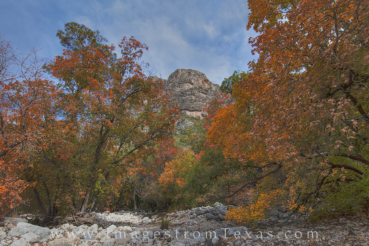 fall colors, texas fall colors, Guadalupe Mountains, McKittrick Canyon, Texas national parks, Guadalupe mountains national park, texas hikes, bigtooth maples, texas maples, autumn, photo