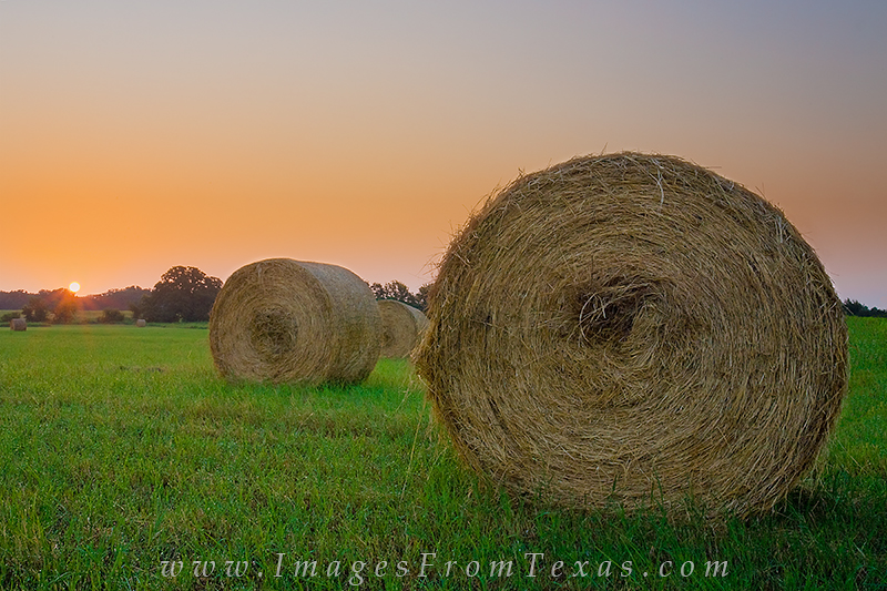 Texas Hill Country pictures,Texas Hill Country photos,Hill Country pictures,Hill country images,Hill country photos, photo