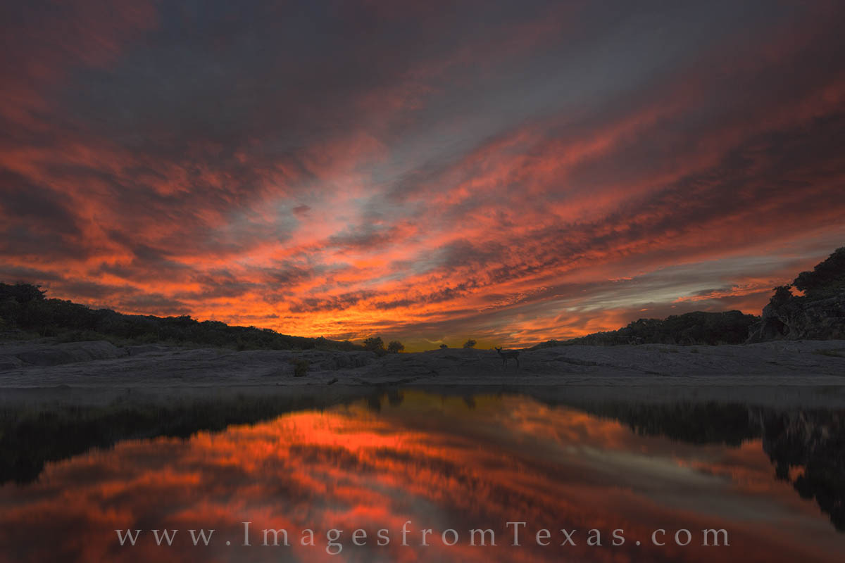 texas hill country photos, texas hill country sunset, best sunset, pedernales river, pedernales falls, deer, texas landscape, photo