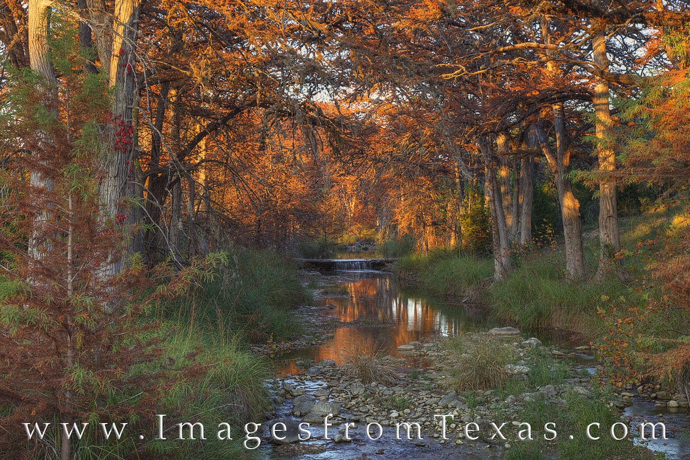 texas hill country, fall colors, sabinal river, waterfall, autumn colors, autumn, texas texas rivers, texas fall colors, medina, vanderpool, photo