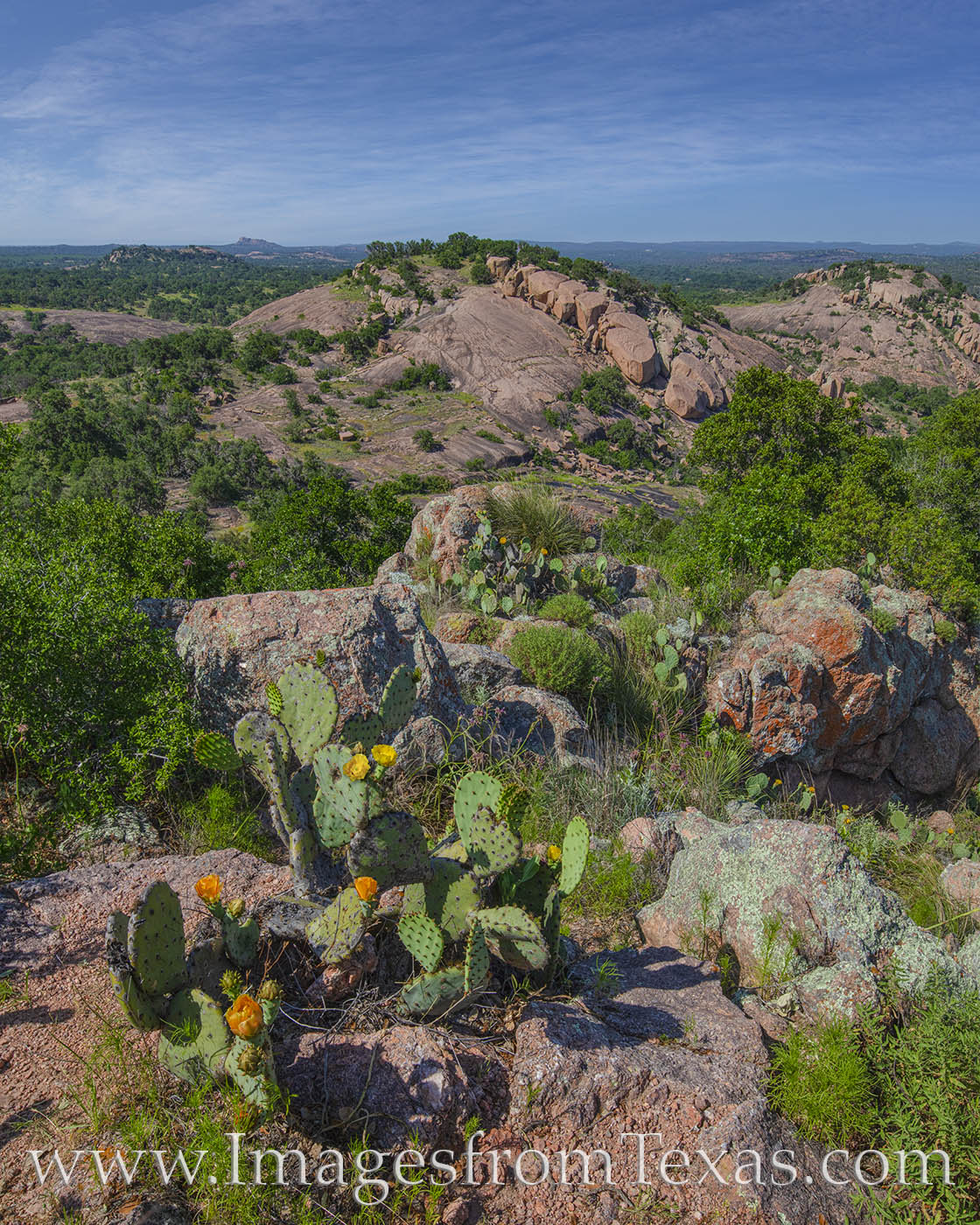 enchanted rock, turkey peak, hill country, prickly pear, afternoon, spring, april, may, state parks, texas state parks, hiking, hot, photo