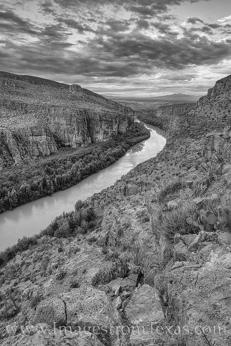 rio grande, hot springs trail, big bend, border, sunrise, morning, hiking texas, big bend hikes, cacti, black and white, photo