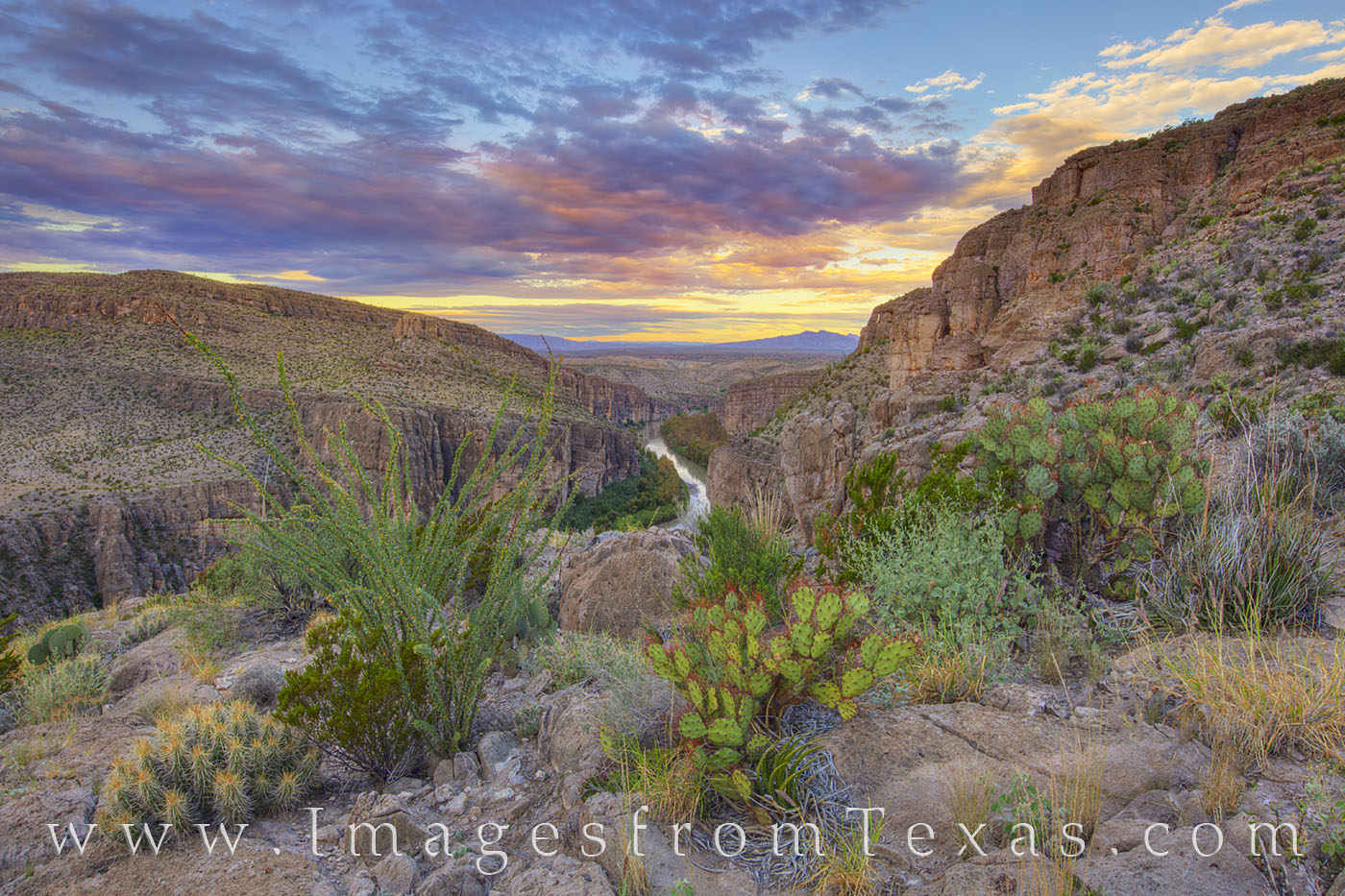 rio grande, hot springs trail, big bend, border, sunrise, morning, hiking texas, big bend hikes, cacti, photo