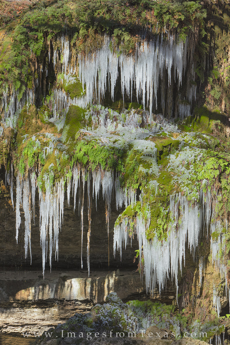 texas hill country, westcave preserve, hamilton pool, texas ice, texas snow, texas grotto, ice in texas, texas parks, photo