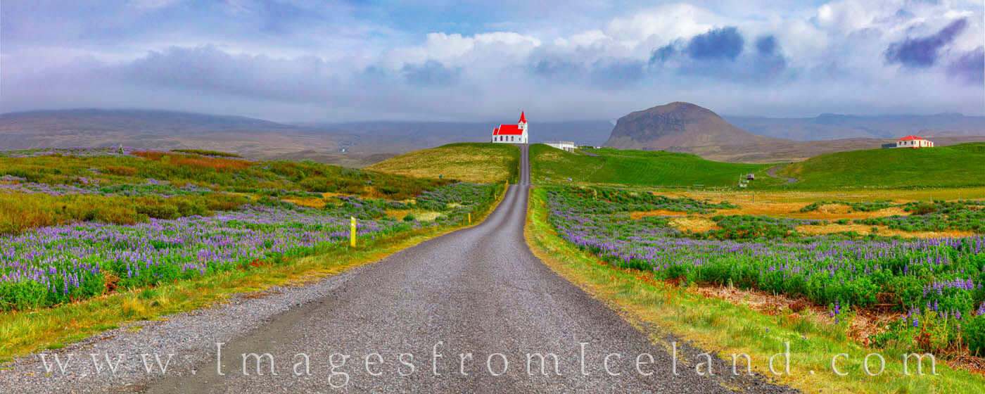 From the small road that leads to the church, this panorama shows the beautiful farmland surrounding Ingjaldshólskirkja - just...