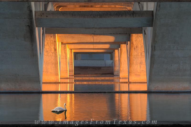 austin bridges,lamar bridge,austin sunrise colors,ladybird lake,town lake,austin prints,stock photography, photo