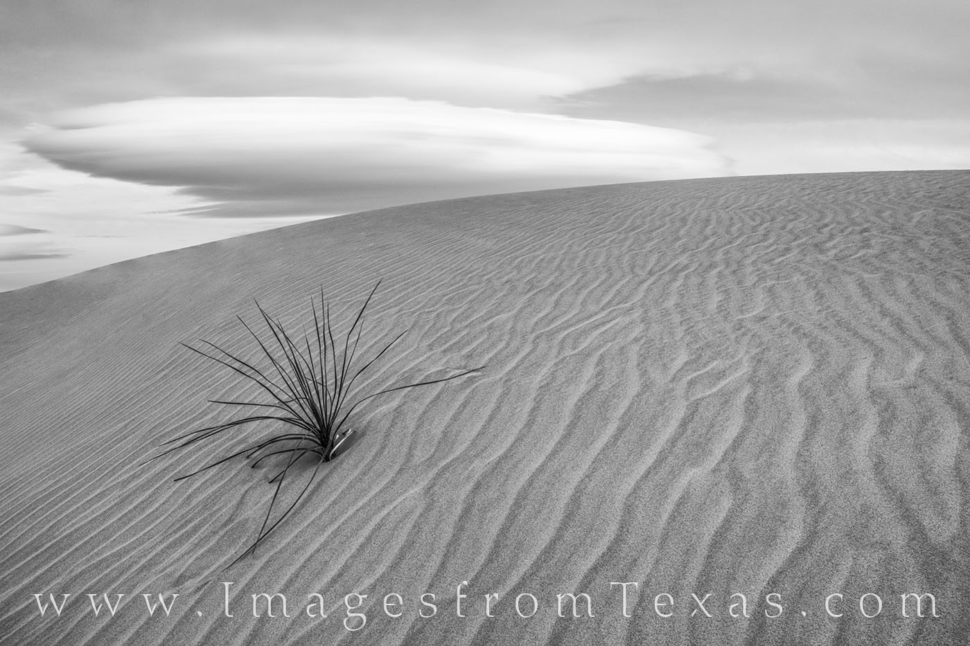 From the Salt Basin Dunes in Guadalupe Mountains National Park, this black and white image shows off one of the most remote areas...