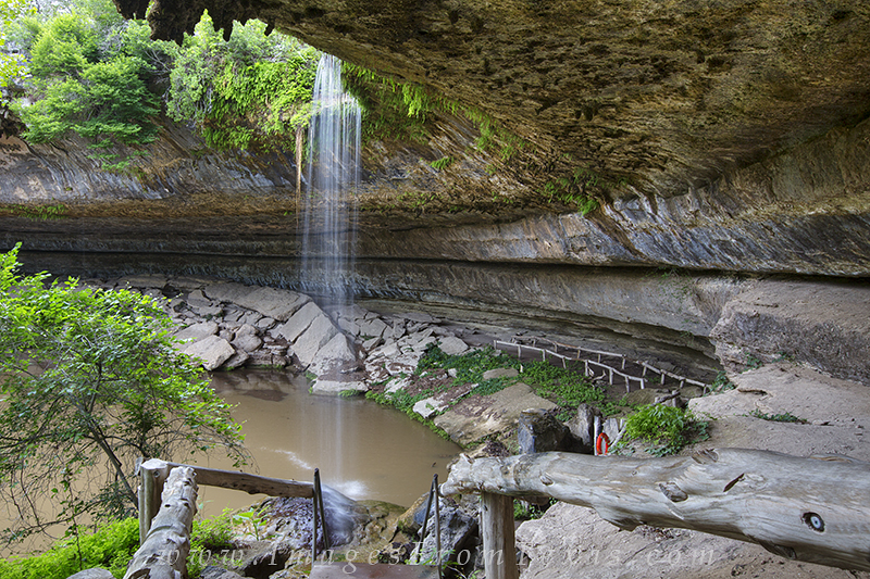 hamilton pool,preserve,texas,grotto,hill country, photo