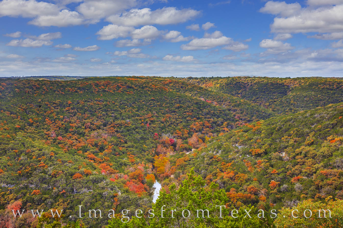 lost maples, autumn, fall colors, texas state parks, november, east trail, lost maples prints, photo