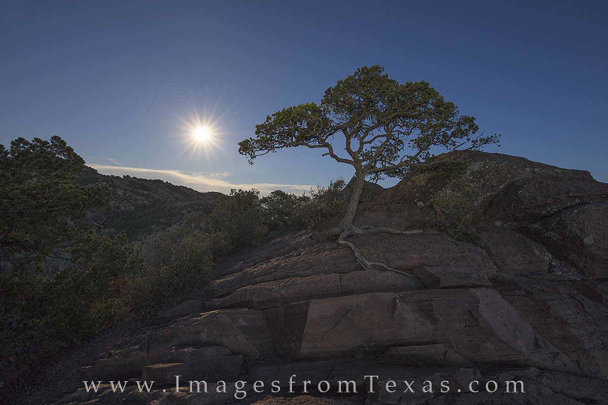 big bend national park, chisos mountains, full moon, lost mine trail, texa hikes, hiking texas, texas national parks, night, photo