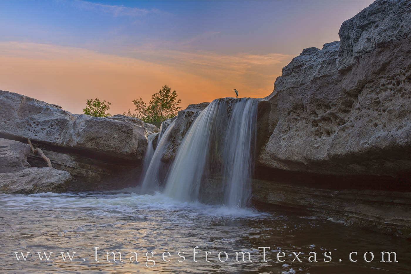 mckinney falls, great white heron, lower falls, texas state parks, austin, waterfall, cascade, evening, sunset, prints for sale, photo