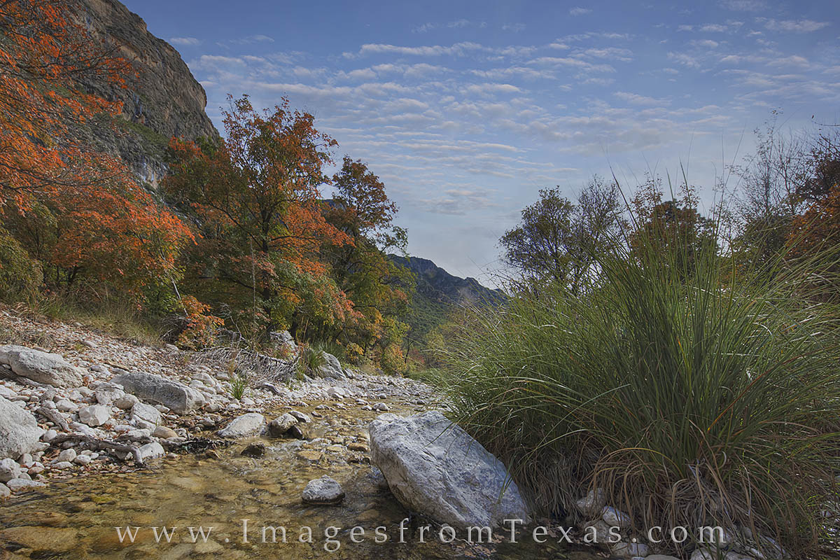A small creek flows through McKittrick Canyon on an early November morning. Bigtooth maples being to show their fall colors in...