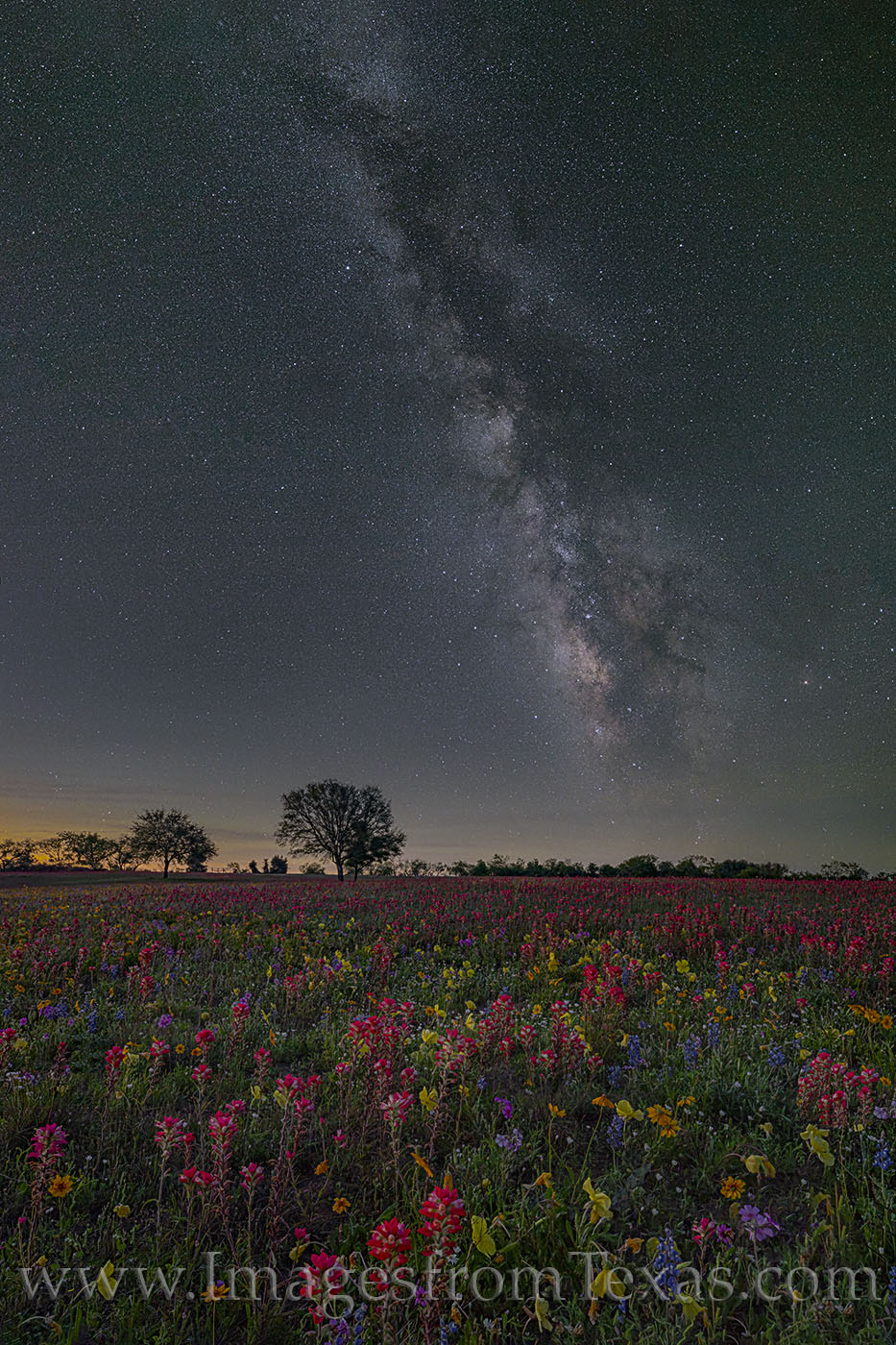 Milky way, wildflowers, rural, bluebonnets, paintbrush, primrose, phlox, stars, night sky, new berlin, night, cold, april, spring