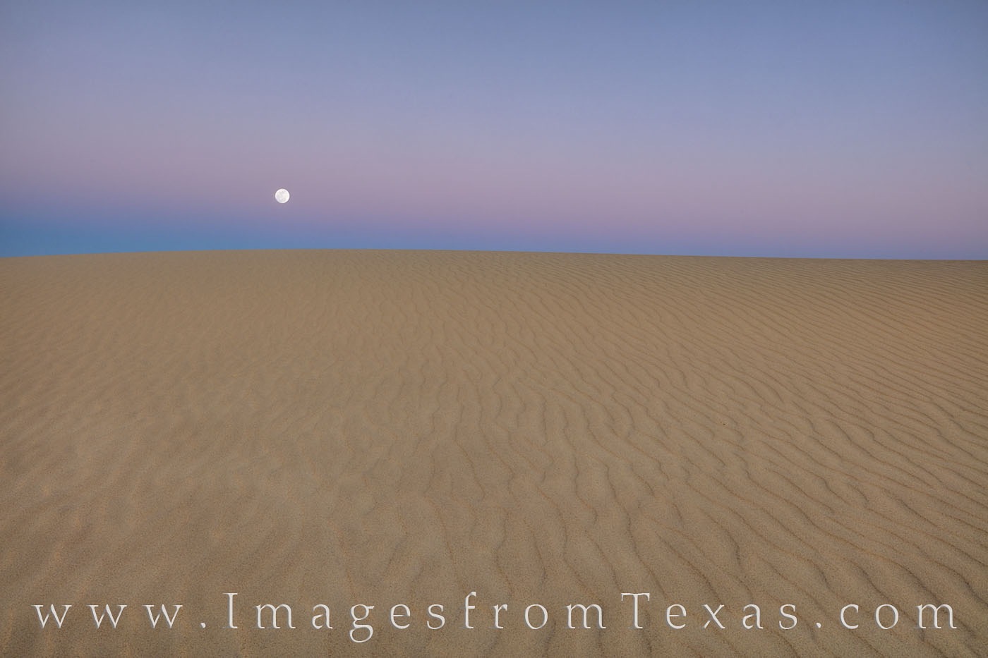 sand dunes, sandhills state park, sunrise, monahans, sand, west Texas, moon, full moon, moonset, photo