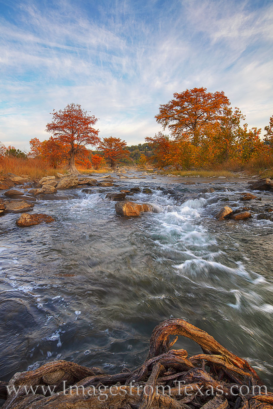 pedernales river, pedernales falls, morming, fall, autumn, cypress, colors, fall colors, hill country, photo