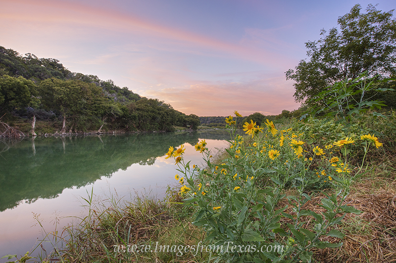 texas wildlfowers,texas hill country,pedernales river,pedernales falls state park,texas sunrise,yellow flowers,wildflowers, photo