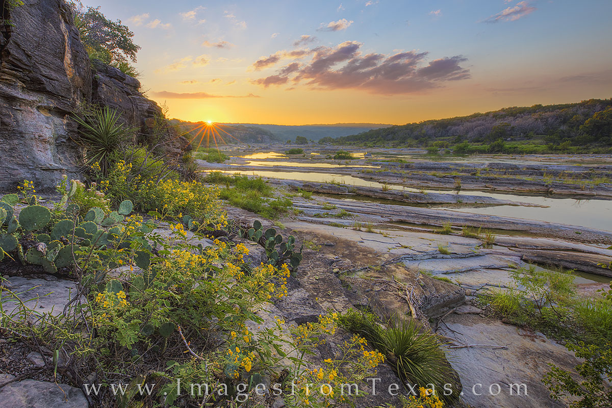 On a warm September morning, golden Texas wildflower bloom from the rocky crags along the Pedernales River. In the distance...