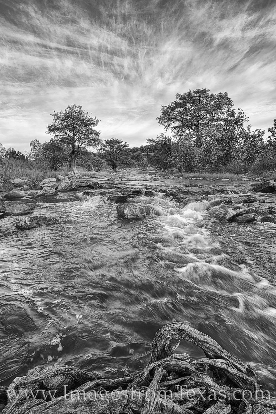 pedernales river, morning, november, black and white, hill country, fall, photo