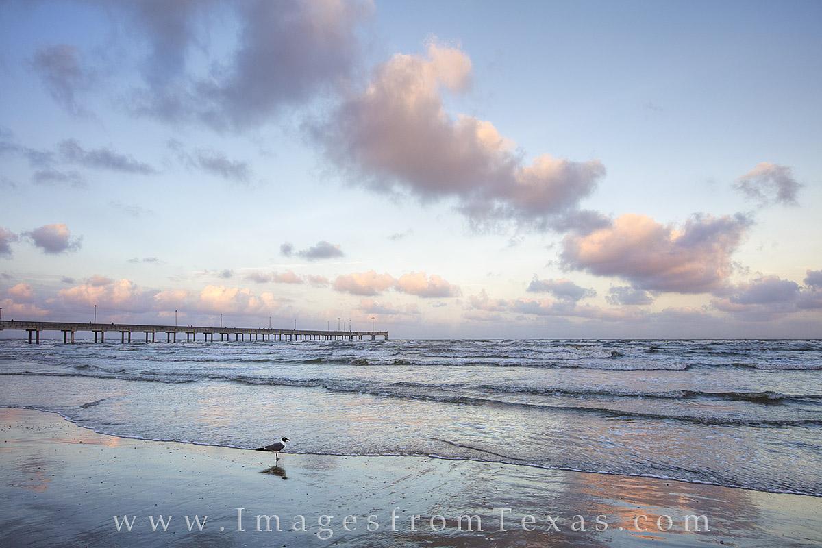 port aransas, Port A, Port A photos, port aransas prints, texas beaches, texas beach prints, texas coast, photo