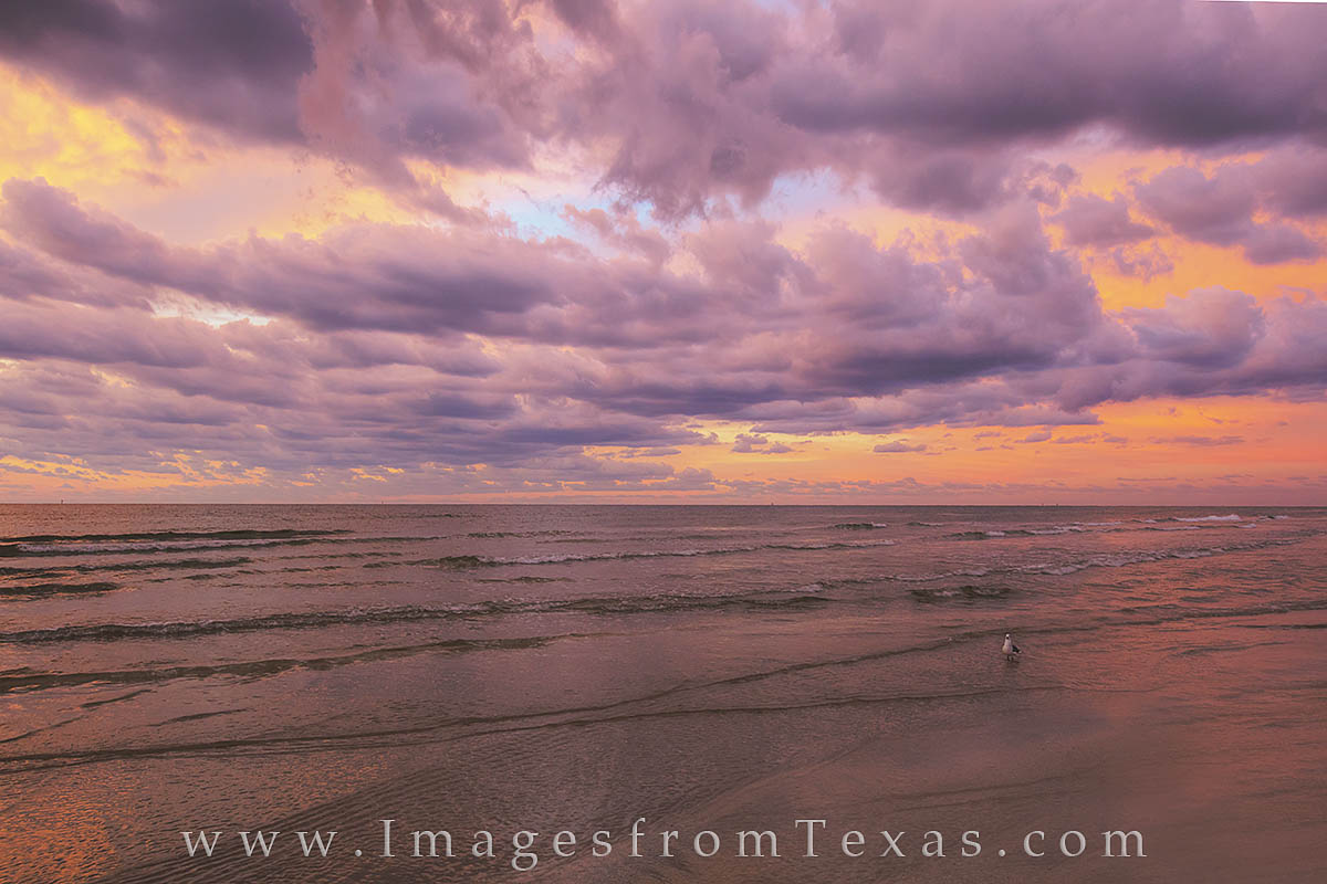 Port Aransas, mustang island, texas coast, Aransas pass, texas beaches, texas landscapes, gulf coast, port Aransas photos, texas sunrise, photo