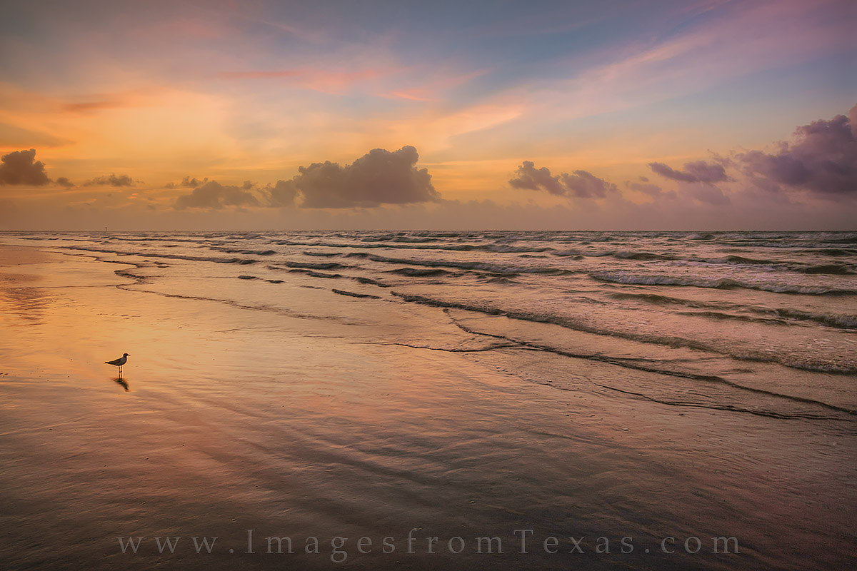 Waves roll onto the beach at Port Aransas on a colorful summer morning as the sun paints the sky in a palette of yellows, oranges...