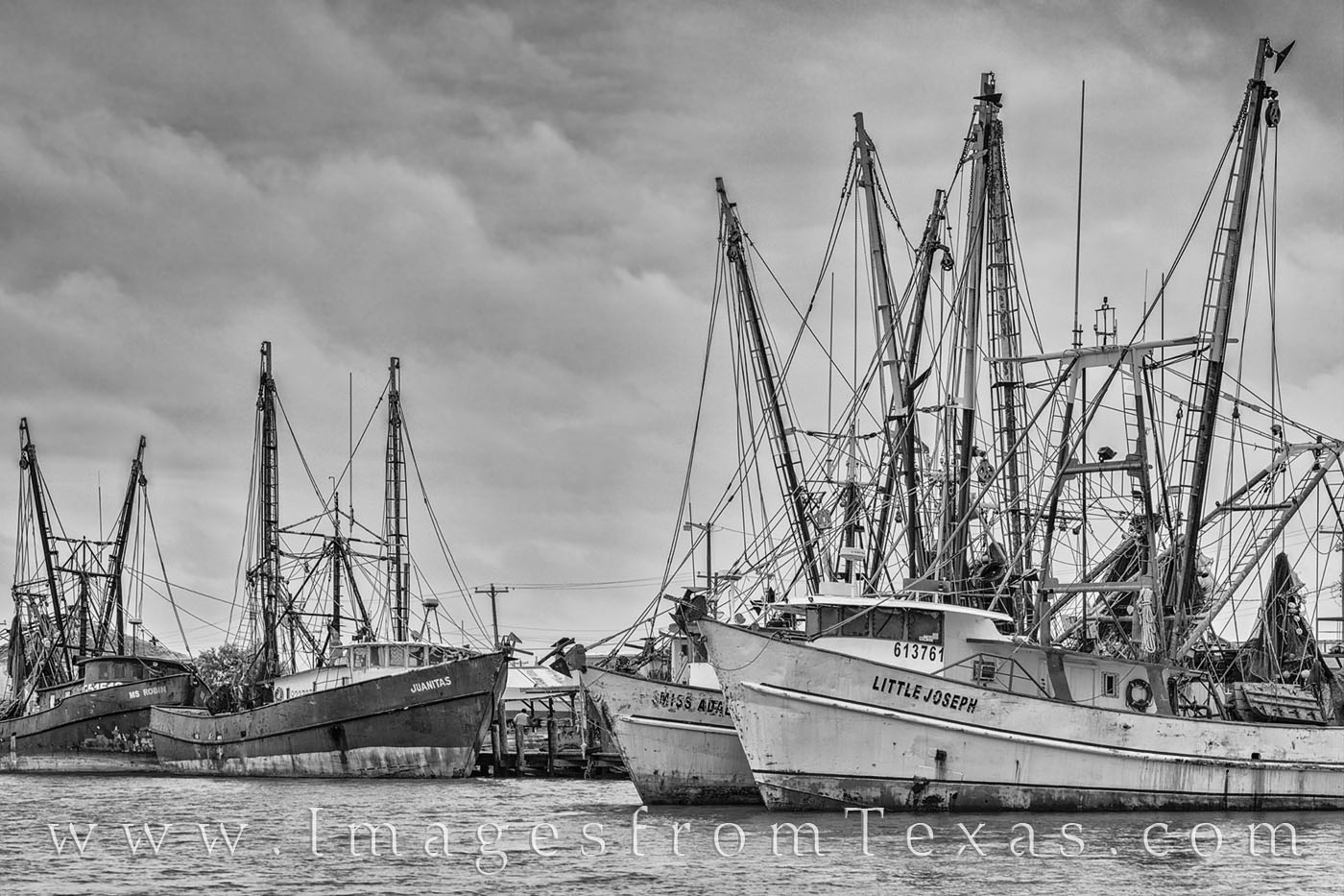 shimp boats, black and white, port isabel, south padre, texas coast, gulf of mexico, dock, harbor, photo