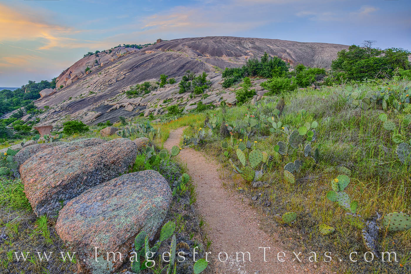 enchanted rock, prickly pear, evening, hiking, trail, blooms, spring, hill country, prints for sale, photo