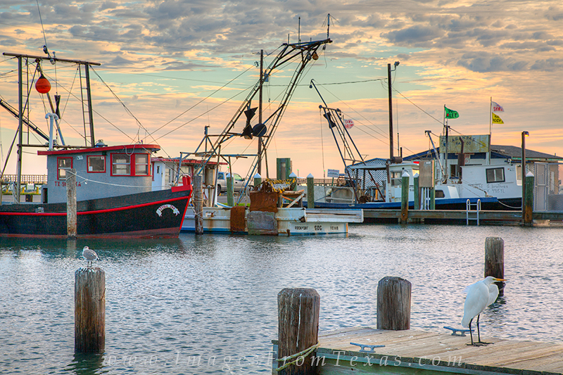 texas coast images,rockport texas images,rockport harbor,texas gulf coast boats, photo