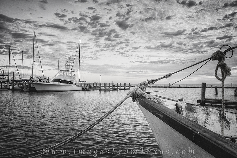 texas gulf coast,rockport images,black and white,rockport texas,texas coast photos, photo