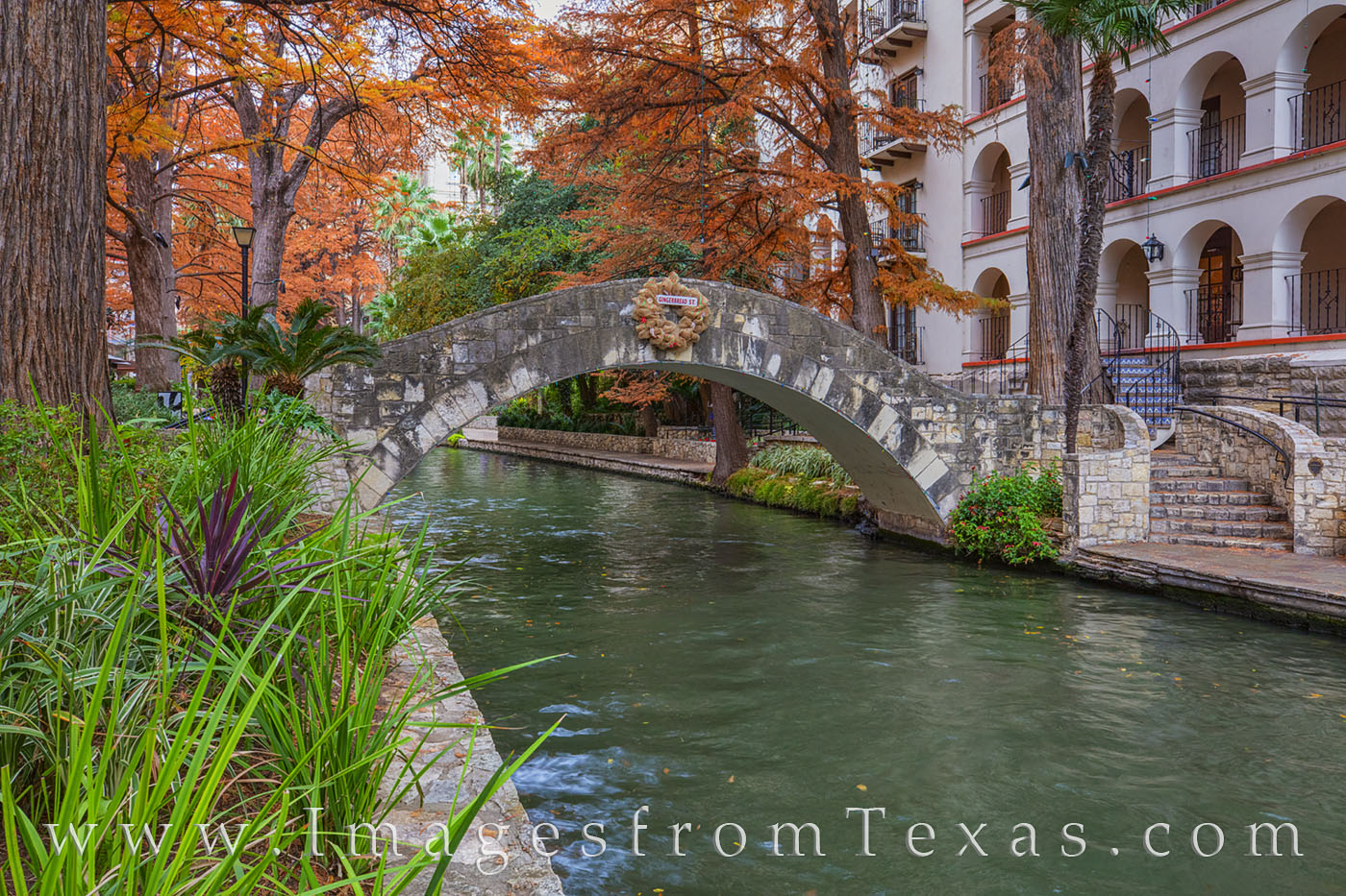 Riverwalk, San Antonio, River, bridge, fall colors, cypress, downtown, photo