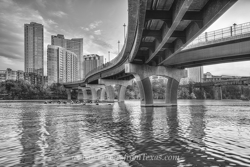austin skyline,black and white,lady bird lake,zilker park,pfluger bridge,pfluger pedestrian bridge,austin sunrise,austin images,austin photos, photo