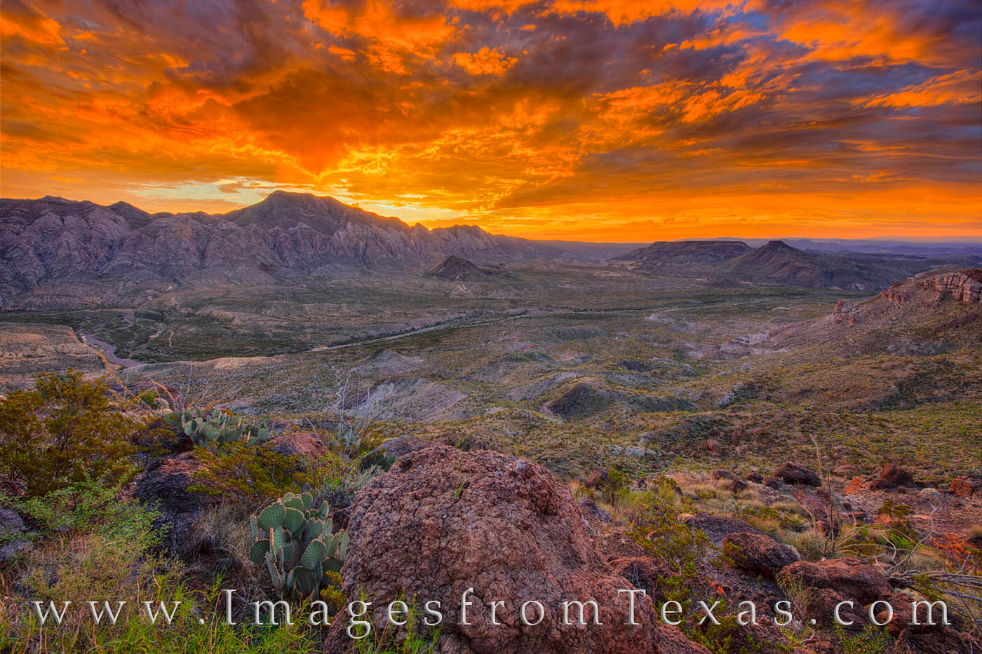 fresno canyon, solitario, big bend ranch, state park, cacti, sunrise, morning, canyon, west texas, chihuahuan desert, laccolith, uplift, hiking texas, photo