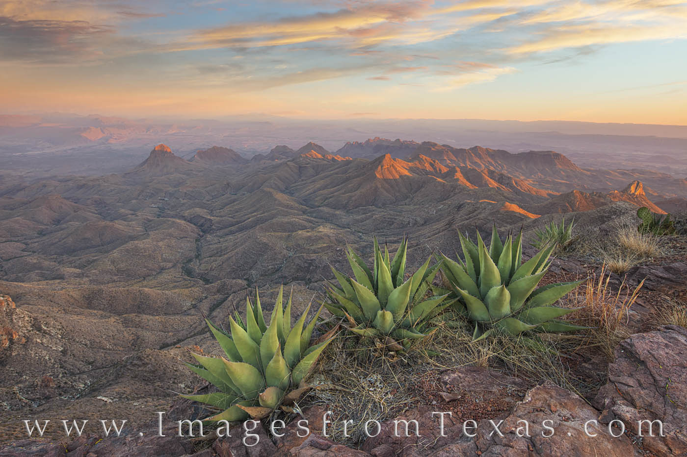 south rim, big bend, agave, sunset, hiking, texas landscape, big bend prints, photo