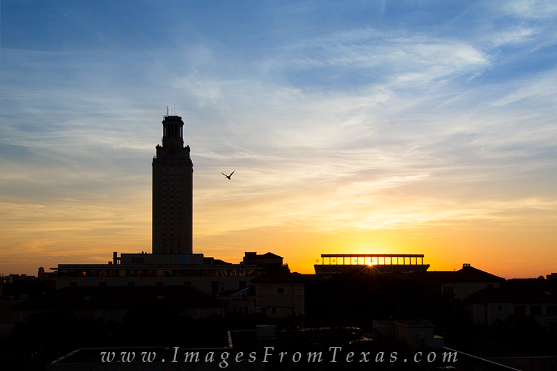 UT Tower sunrise,UT Tower prints,Texas tower prints, photo