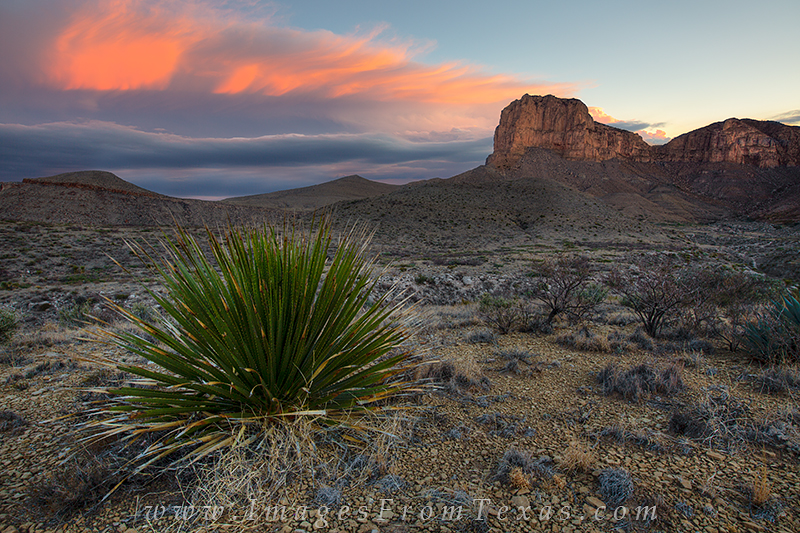 guadalupe national park,guadalupe mountains national park,texas national park,guadalupe peak,g,el capitan images, photo