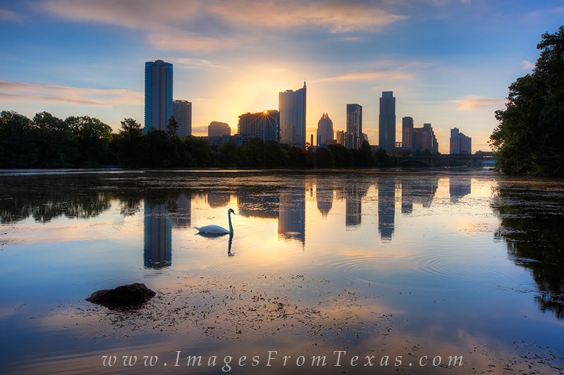 On a warm September morning, I set out to photograph the Austin skyline from Lou Neff Point. I was blessed with nice clouds and...
