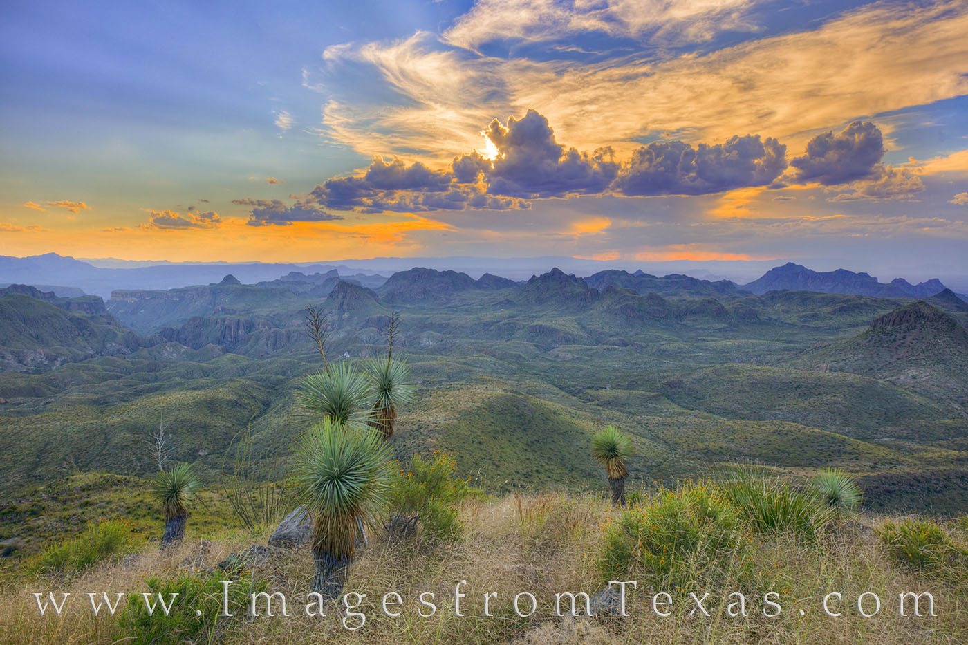oso mountain, oso peak, big bend ranch state park, hiking, dirt road, sunset, mountains, big bend ranch, yucca, cacti, desert, photo