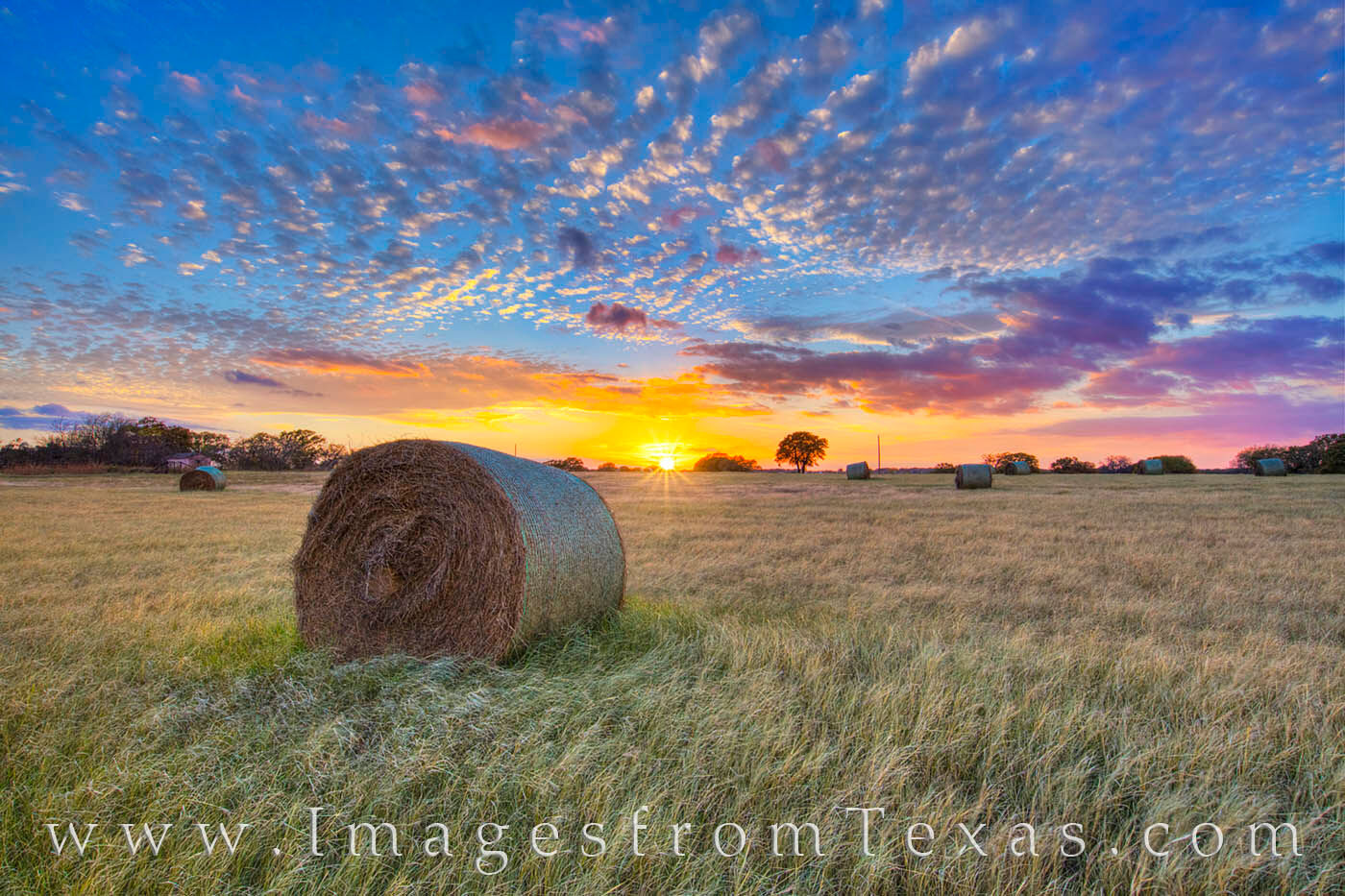 texas hay bales,bales of hay,texas sunset,hay bale images,texas landscapes, photo