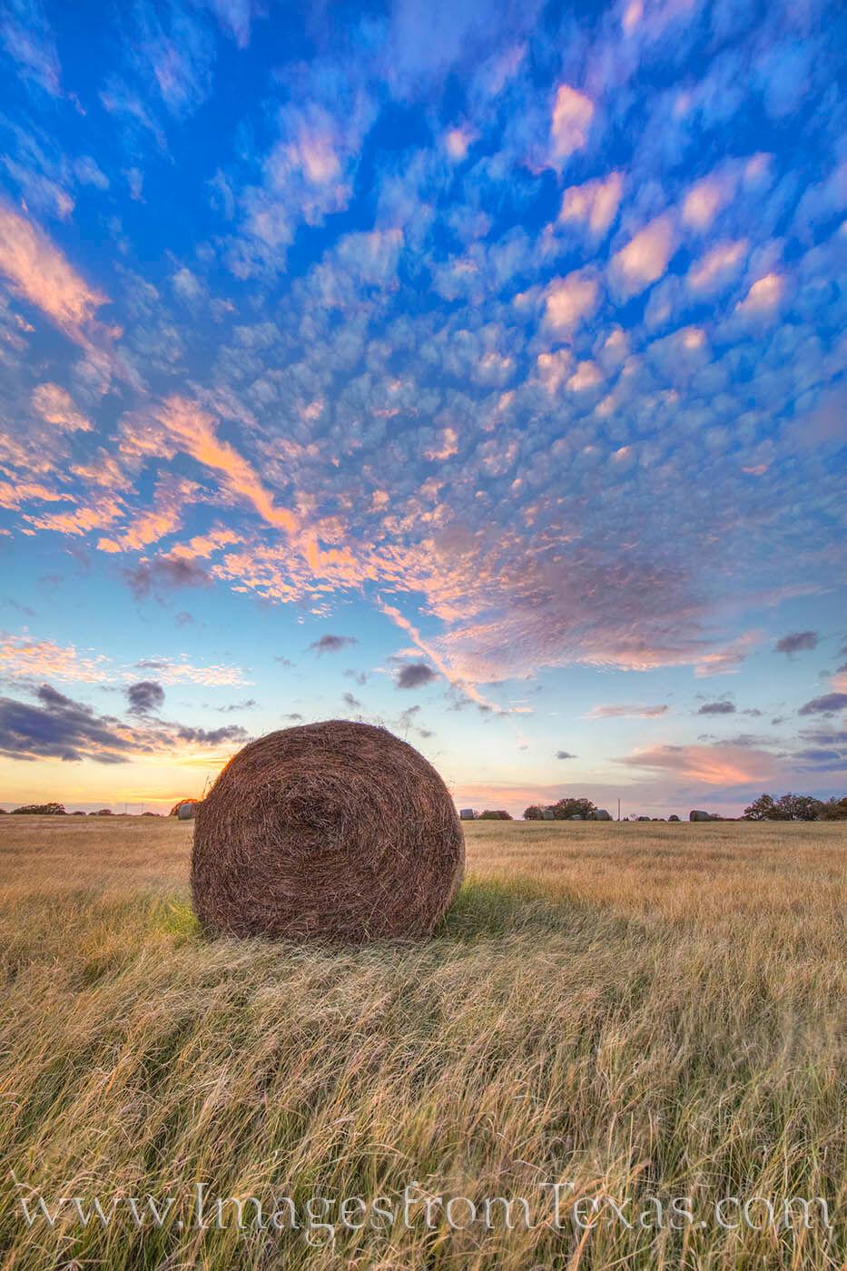 hay bales,hay bales images,texas hay,texas sunset,texas ranch images, photo