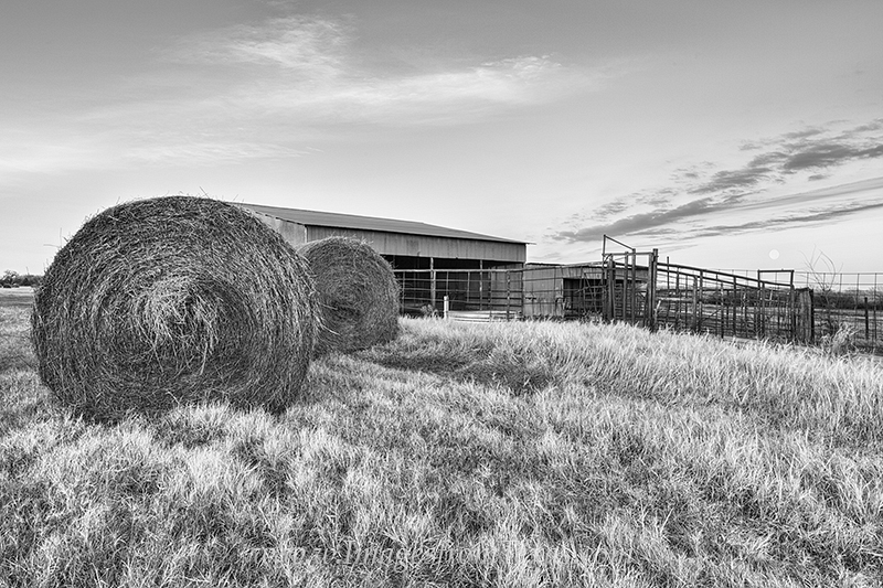 Hay Bales stand in front of an old barn in this scene from a Texas ranch. This photograph was taken as a full moon was rising...