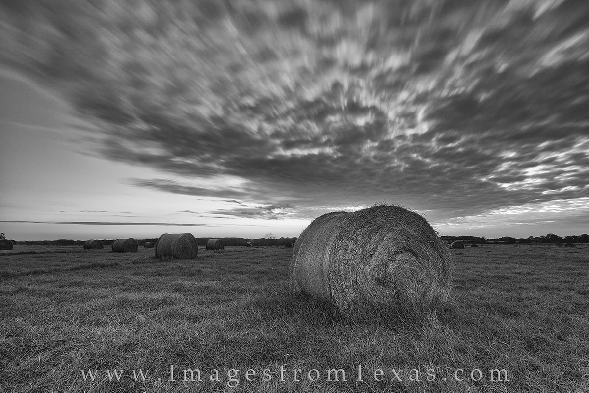 black and white, texas hill country, texas hill country in black and white, texas hay bales, hay, texas landscapes, texas sunrise, texas ranch, ranch, photo