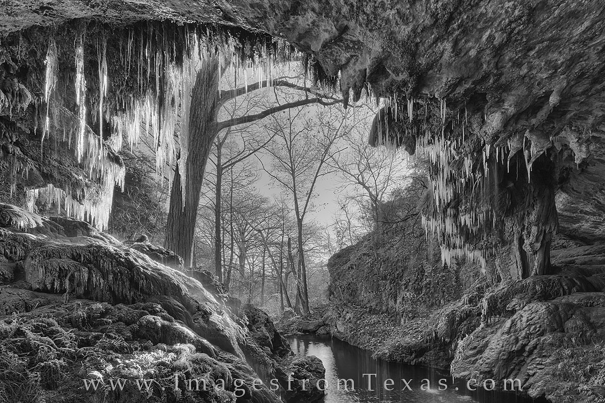 black and white, texas hill country, westcave preserve, ice, icicles, snow, hamilton pool, photo
