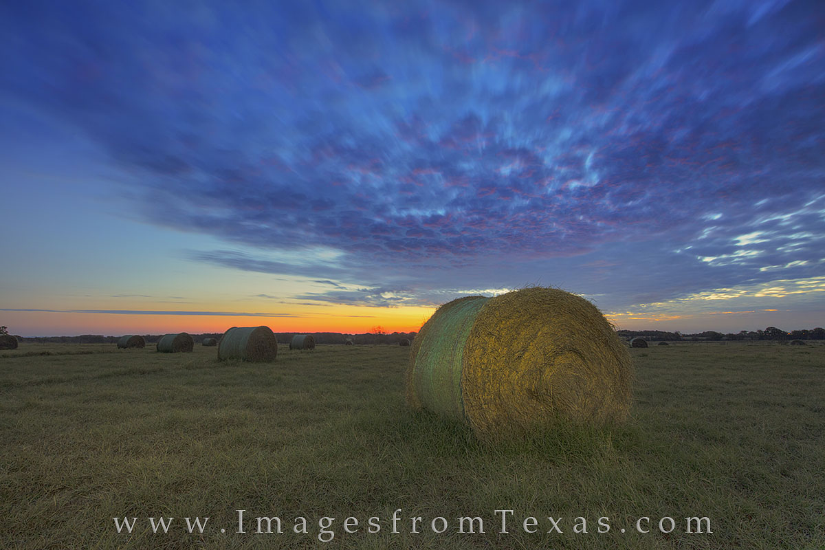 hay bales, texas sunrise, texas ranch images, texas farm photos, hay photos, hay bale pictures, texas images, hay, photo