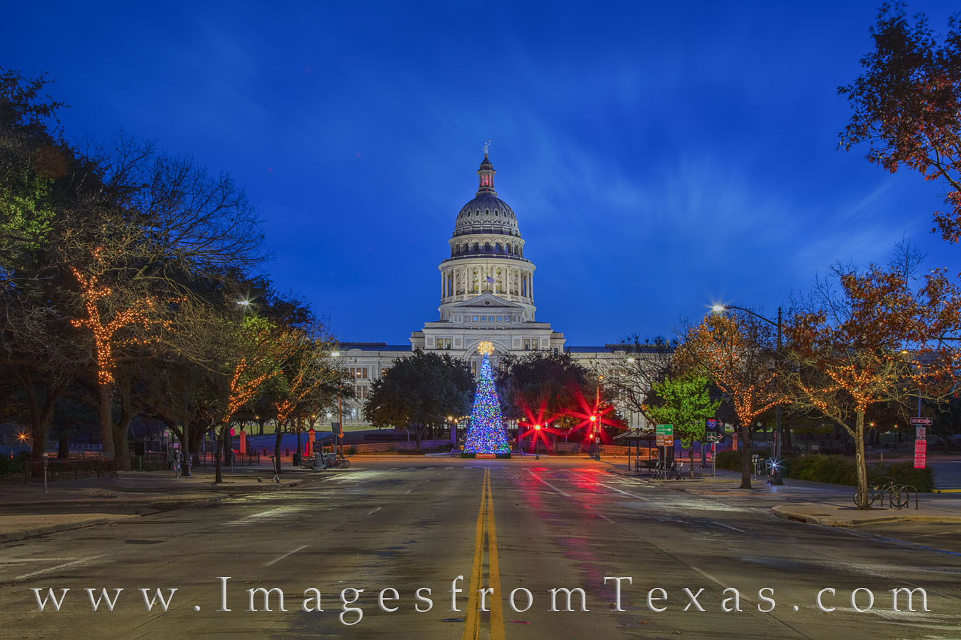 texas state capitol, state capitol, congress avenue, congress, christmas tree, christmas, holiday, december, holiday tree, christmas card, season greetings, season, greetings, texas, capitol, photo