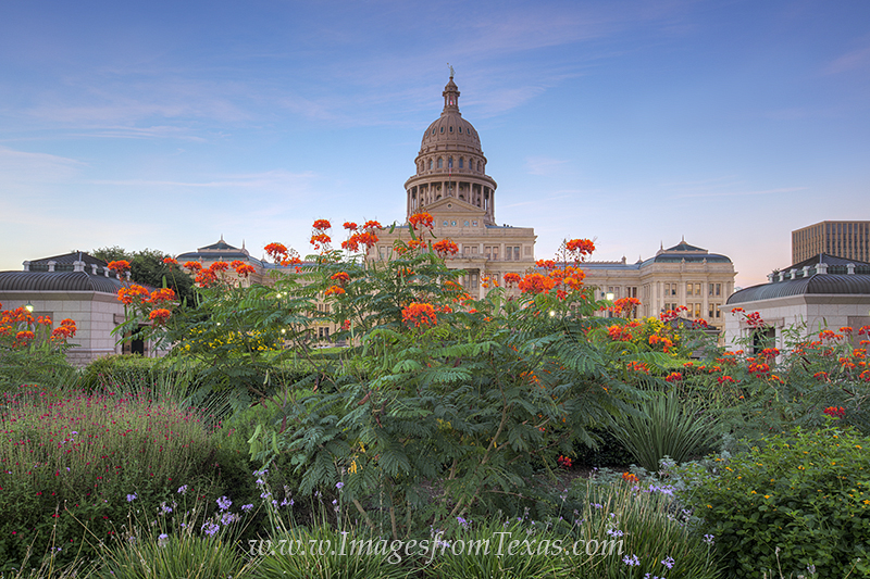 Looking south at the Texas State Capitol, visitors can see the 308 feet tall red granite structure rise into the air. Surrounding...