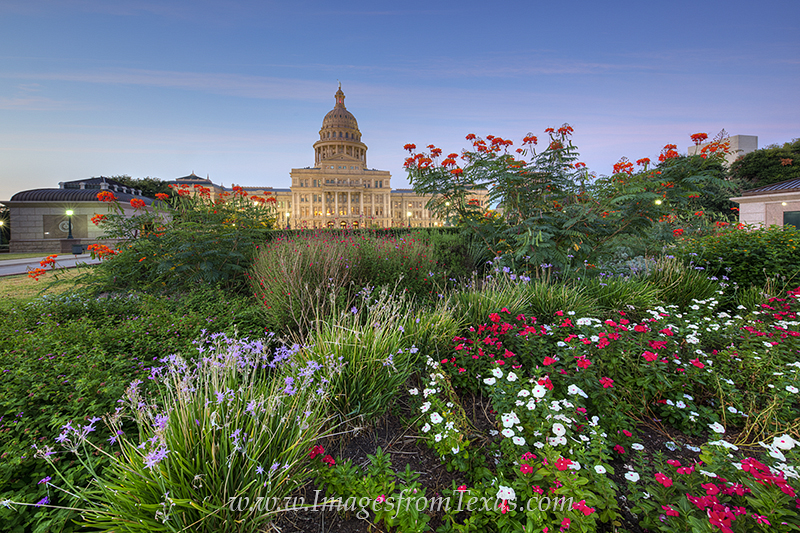 Texas State Capitol September Flowers 3 Austin Texas