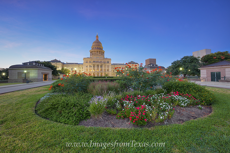 Flowers of orange, red, and white bloom on the north lawn of the Texas State Capitol near downtown Austin. On this portion of...