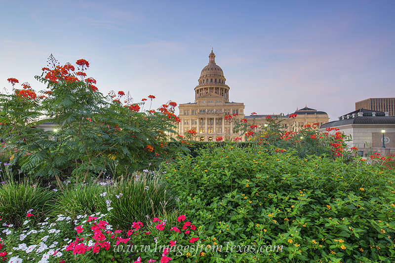 The Texas State Capitol sits on 22 acres of beautiful land filled with walkways such as the shaded Great Walk on the south side...