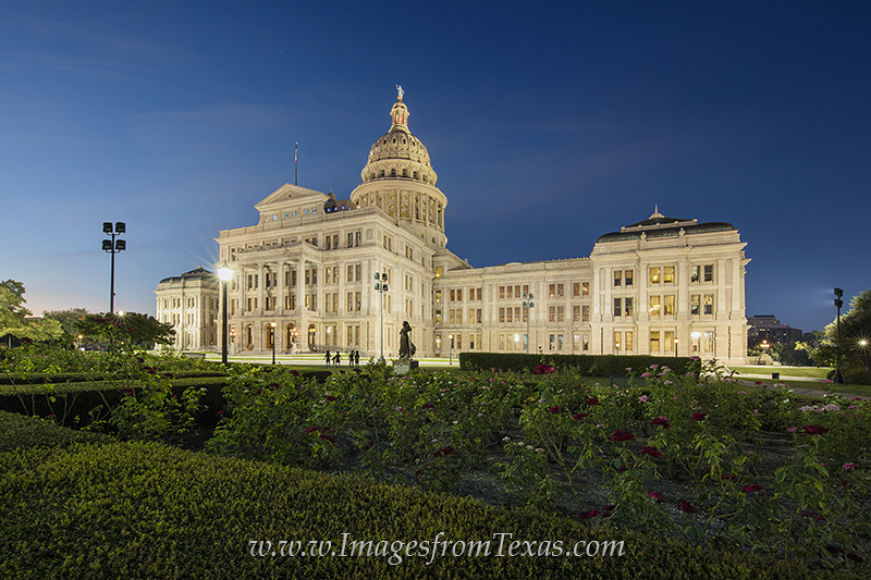 texas capitol rose garden,texas state capitol,austin texas images, photo